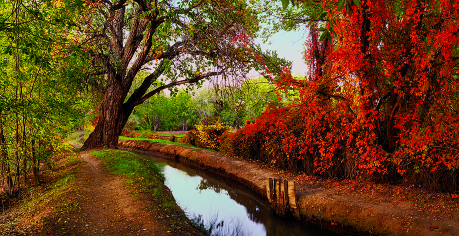 'Red Acequia' by Bill Tondreau
